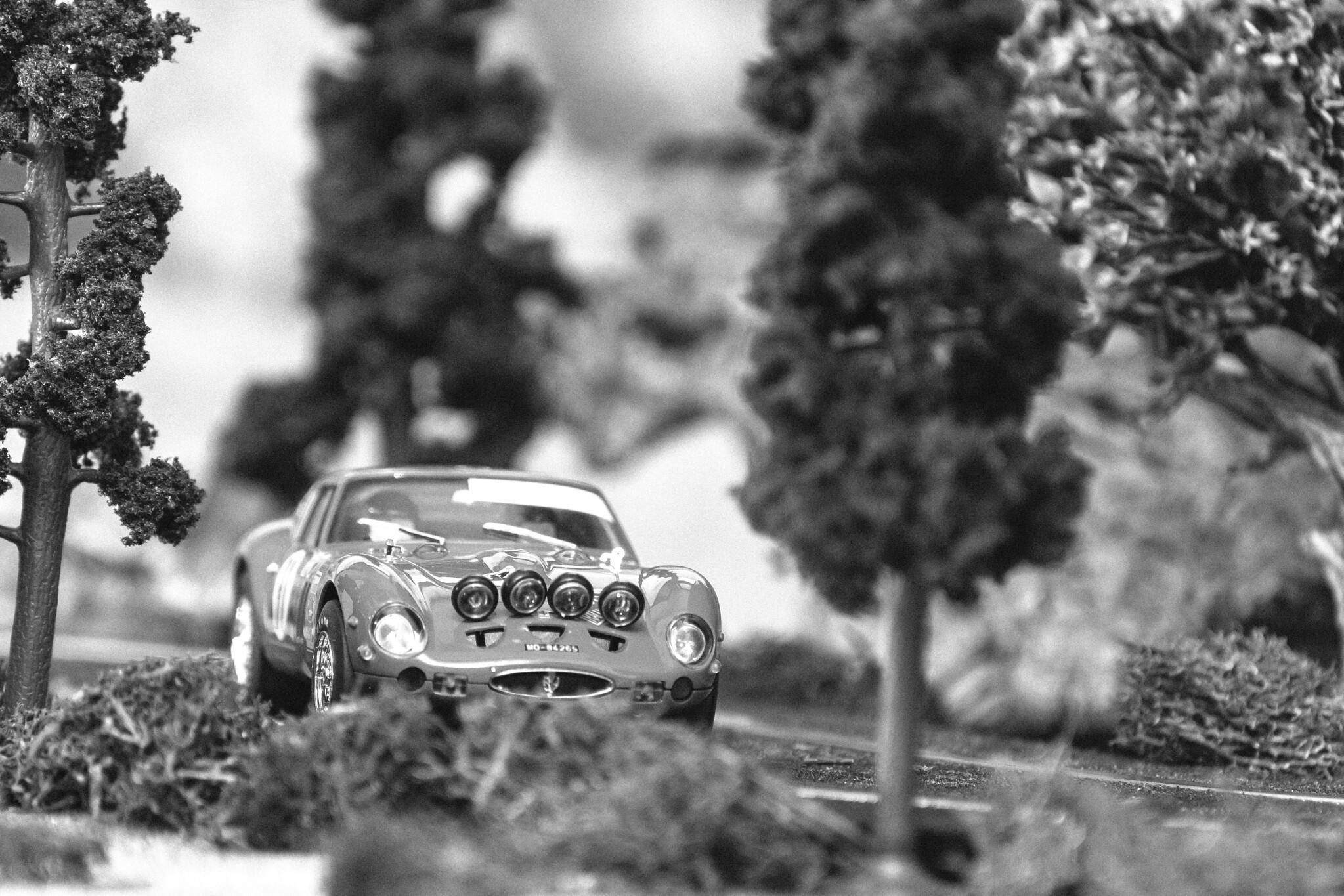 Ferrari 250 GTO Rally de Gerona 1968